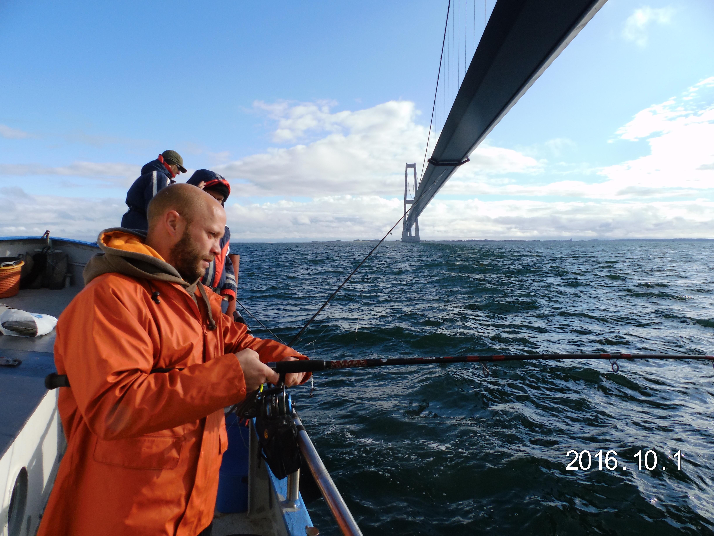 ablandiger wind angeln